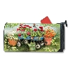 GERANIUMS BY DOZEN MAILWRAP Thumbnail