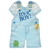 IT'S A BOY GARDEN FLAG Thumbnail